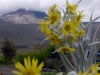 10-aqui-estabamos-a-3500m-sobre-el-nivel-del-mar-cerquita-del-cotopaxi