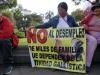 40-manifestacion-en-contra-del-desempleo-en-la-plaza-de-carondelet