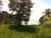 vista-desde-otro-lado-del-puente
