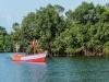 gallinas_006 Los espesos manglares del Río Kerefe ofrecieron una cobertura perfecta para el comercio ilegal de esclavos desde el río hasta los barcos en el mar.