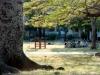 parques vedado 12.jpg
