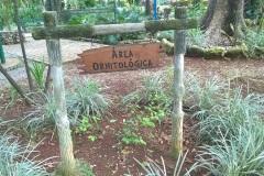 ORNITOLOGICA-1