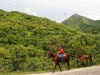 Mule Drivers in Cuba