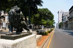 Paseo-del-Prado-con-sus-leones-en-solitario-yailin-alfaro
