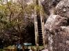 3-escalera-de-acceso