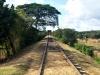 Para apoyar el comercio de azúcar, se fundó una línea de ferrocarril que conecta las áreas interiores del valle con Trinidad y puertos vecinos.