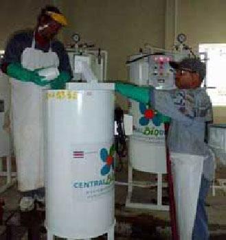 Biodiesel cubano