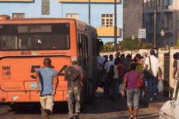"""Uno de los nuevos """"P"""" que repusieron a los camellos.  Foto: Juan Suárez"""