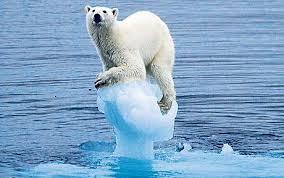 Cambio climático.  Foto: niu.edu