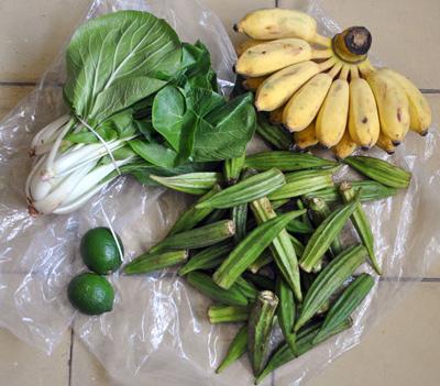 Una mano de plátano ($10), 2 libras de quimbombó ($14), dos limones ($6), un mazo de acelga ($8). Total: 38 pesos, el salario de un día y medio.