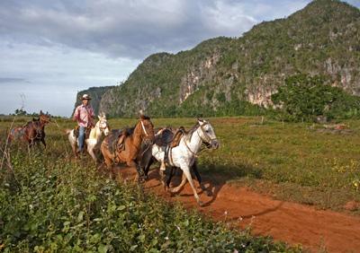 Cowboy en Pinar del Río.  Foto: Liset Cruz