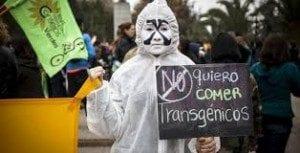 Hay una campaña mundial contra los transgenicos.