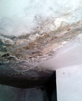 Panorama repetido de techo y paredes en el apartamento abandonada que pretendían dar a Odalis.