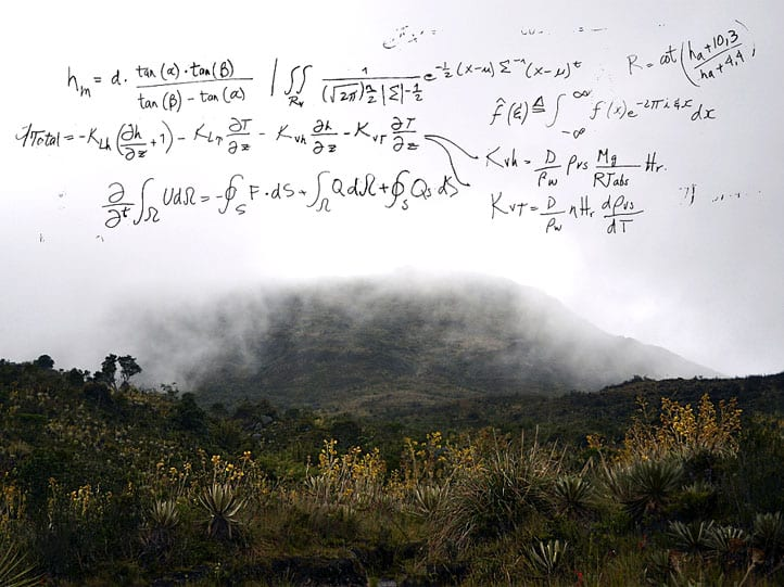 Paradigma por Rafael Villares