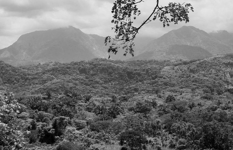 La Sierra de Perijá