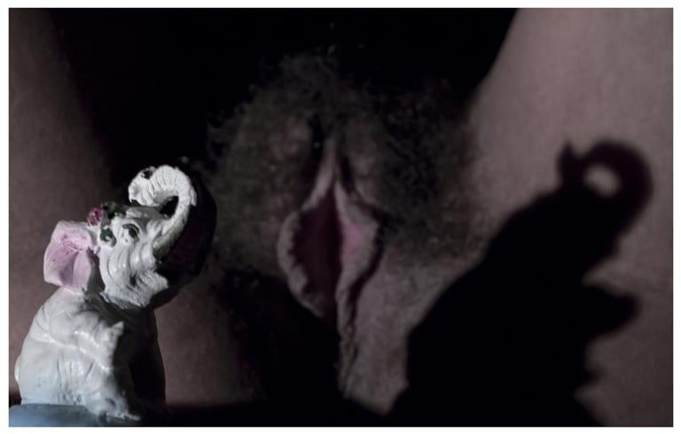 Un elefante cantandole a la luna.