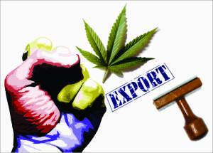Ilustración: legalizacioncomerciomarihuana.wordpress.com