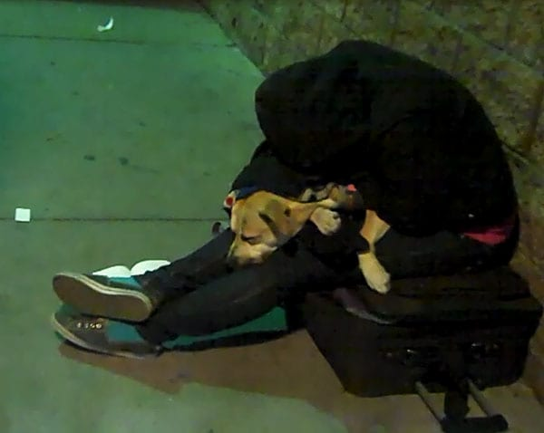 San Diego, muchacha homeless y su perro.