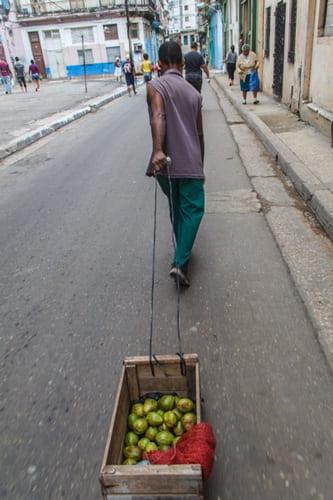 Hombre vendiendo guayabas.