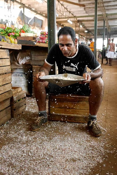 Limpiando el arroz. Foto: Amelia Cabatit Marcopoto