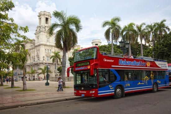 El omnibus que nos llevó a Playa Santa Maria.  Foto: tripadvisor.ca