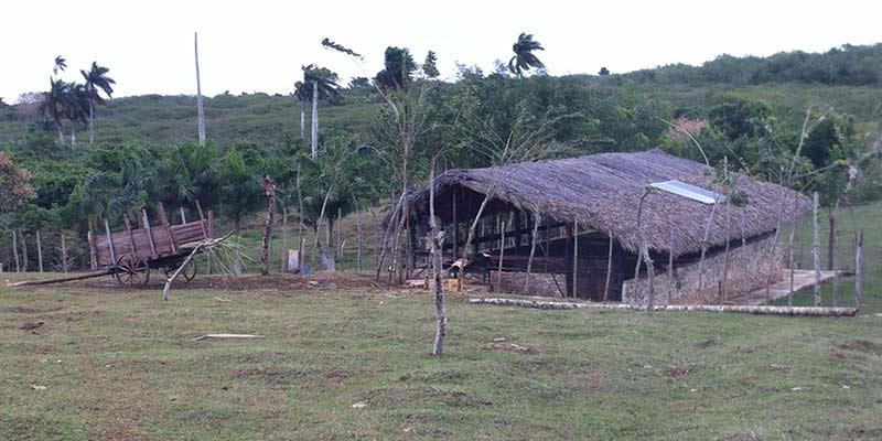 Las piedras que pudieron ser una dificultad para la agricultura, en la finca sirvieron para construir. Foto: Raquel Pérez Díaz