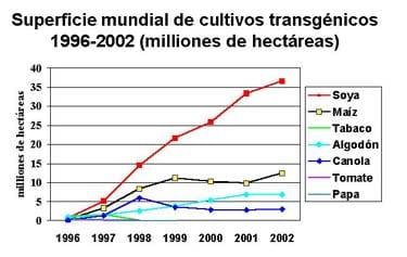 El usado de los cultivos transgénicos en los Estados Unidos ha sido más que el usado en muchos otros países. Los datos presentados a continuación muestran. Foto: cls.casa.colostate.edu