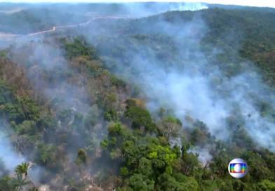 Alerta por grandes incendios forestales en Amazonas; Odio gubernamental contra migrantes en EUA., Dimite primer ministro en Italia, y más