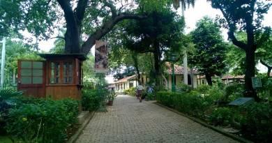 La quinta de los molinos, un paraíso dentro de la ciudad